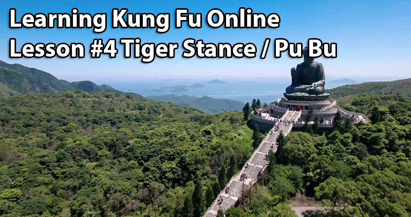 ☯ ☯ Learning Kung Fu Online Lesson #4 Tiger Stance / Pu Bu