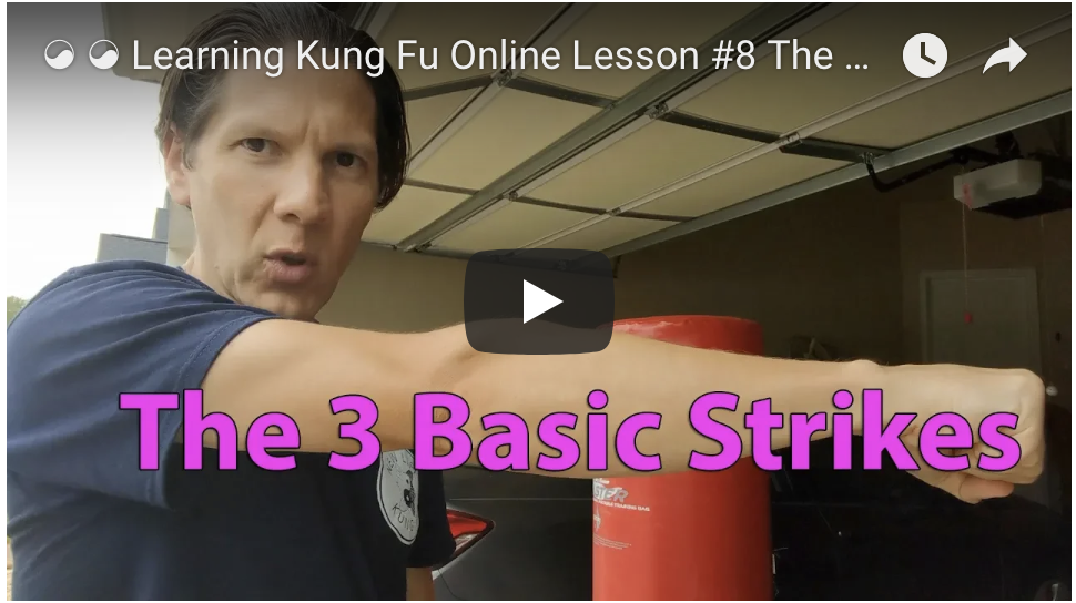 Learning Kung Fu Online Lesson #8 The 3 Basic Hand Strikes