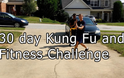 30 day Kung Fu and Fitness Challenge