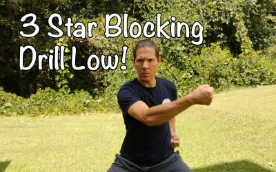 ☯ Learning Kung Fu Online Lesson #9, 3 Star Blocking Drill Low