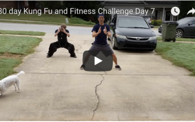 30 day Kung Fu and Fitness Challenge Day 7