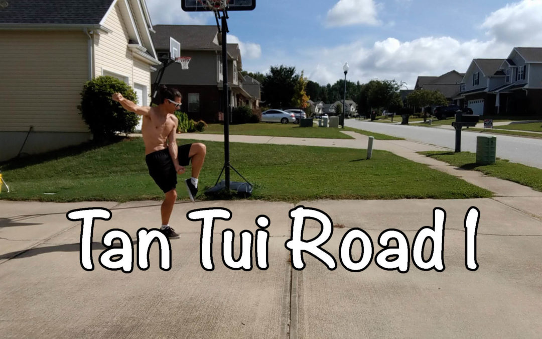 Tan Tui Road 1, Learn Kung Fu in Spartanburg SC