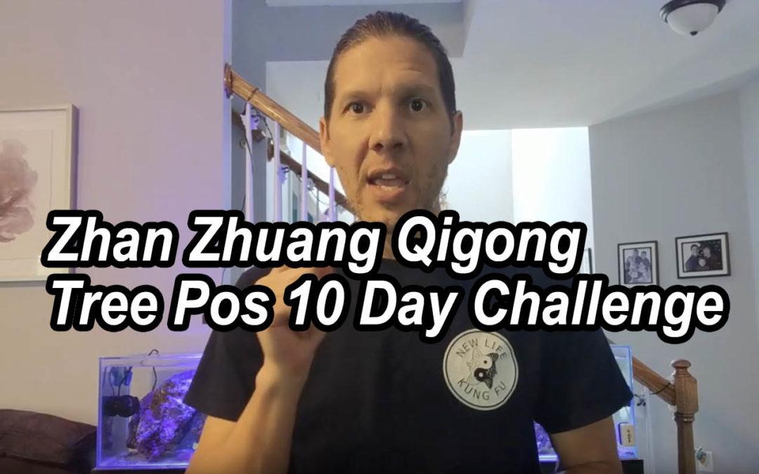 Zhan Zhuang Qigong Tree Pose Standing Meditation 10 Day Challenge